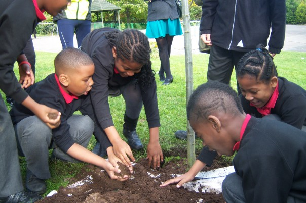 Many hands make light work of tree planting at Nelson Primary
